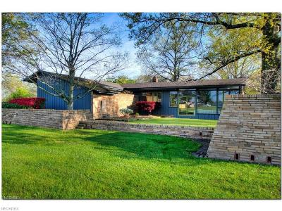 Summit County Single Family Home For Sale: 1007 West Steels Corners Rd