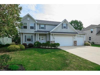 Painesville Township Single Family Home For Sale: 939 Outrigger Cv