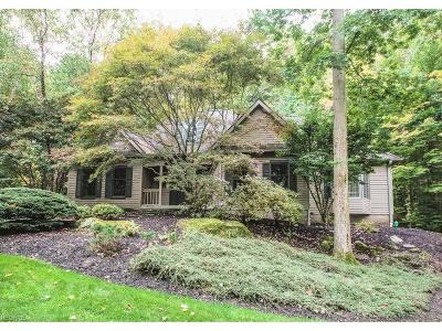 Chagrin Falls Single Family Home For Sale: 8361 Lucerne Dr