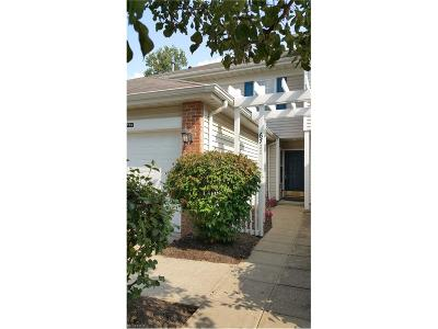 Middleburg Heights Condo/Townhouse For Sale: 6711 North Ivy Ln