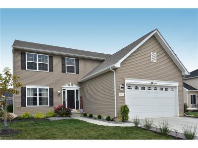 North Ridgeville Single Family Home For Sale: 9097 Morgan Cir