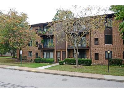 Middleburg Heights Condo/Townhouse For Sale: 16455 Heather Ln #T302
