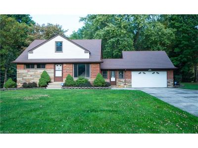 Willoughby Hills Single Family Home For Sale: 2915 Emerald Lake Blvd
