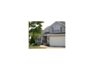 Broadview Heights Single Family Home For Sale: 1365 Rome Cir