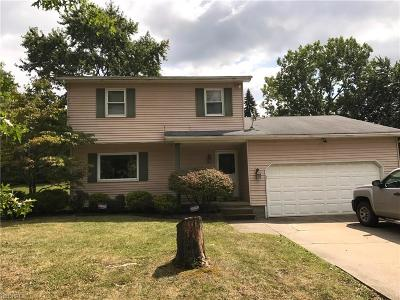 Youngstown Single Family Home For Sale: 4631 Rush Cir