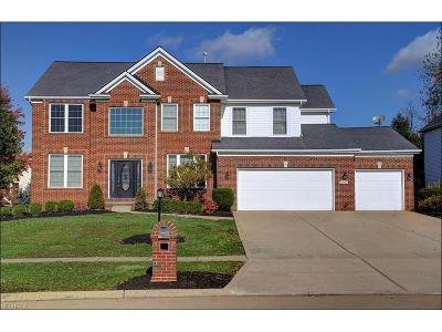 Strongsville Single Family Home For Sale: 20592 Kelsey Ln