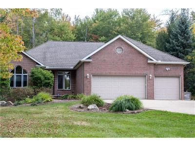 Solon Single Family Home For Sale: 7109 Liberty Rd