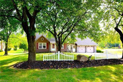 Solon Single Family Home For Sale: 5305 Brainard Rd