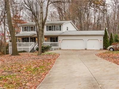 Single Family Home For Sale: 5625 State Route 5