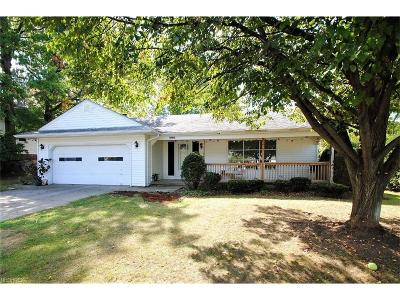 Rocky River Single Family Home For Sale: 20107 Mercedes Ave