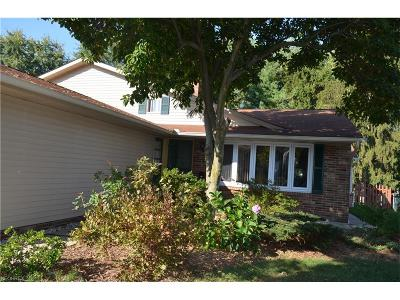Solon Single Family Home For Sale: 6590 Arbordale Ave