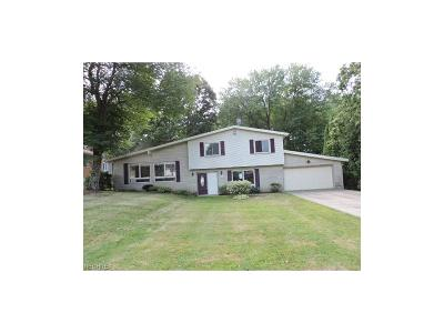 Warren OH Single Family Home For Sale: $94,900