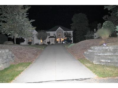 Oakwood Village Single Family Home For Sale: 24301 Forbes Rd