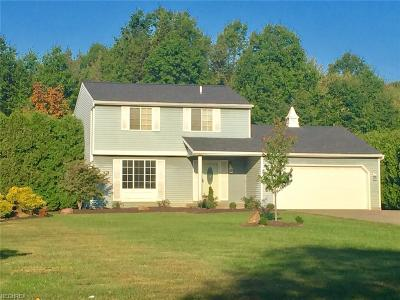 Canfield Single Family Home For Sale: 6670 Summit Dr
