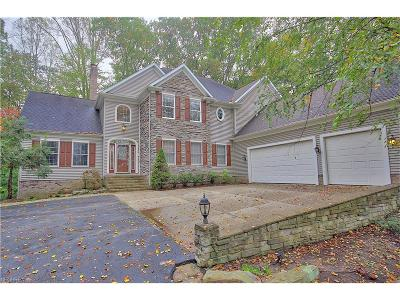 Geauga County Single Family Home For Sale: 7101 Bramshill Cir