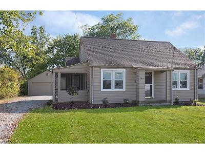 Canfield Single Family Home For Sale: 347 West Main St