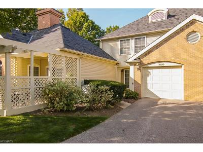 Westlake Condo/Townhouse For Sale: 3062 Village Green Dr