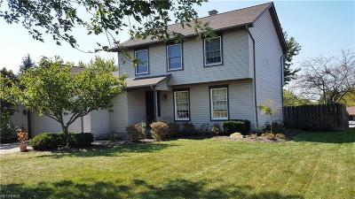 Austintown Single Family Home For Sale: 6589 South Timberidge Dr