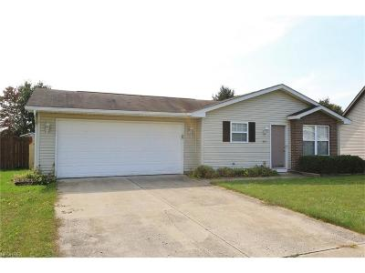 Licking County Single Family Home For Sale: 985 Garfield Ave