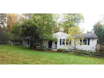 Geauga County Single Family Home For Sale: 9709 Sylvanhurst Ln