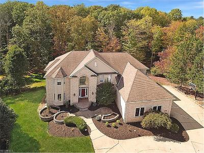 Brecksville, Broadview Heights Single Family Home For Sale: 7970 Windridge Dr
