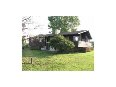 Ravenna Single Family Home For Sale: 5603 State Route 14
