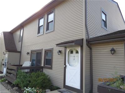 Bedford Condo/Townhouse For Sale: 564 Turney Rd #B