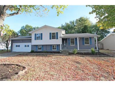 Youngstown Single Family Home For Sale: 7486 Jaguar Dr