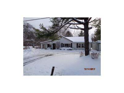 Burton Single Family Home For Sale: 12801 Kinsman Rd