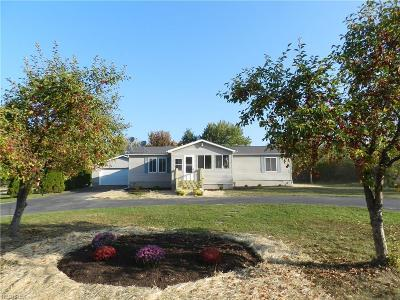 Mantua Single Family Home For Sale: 6037 State Route 303