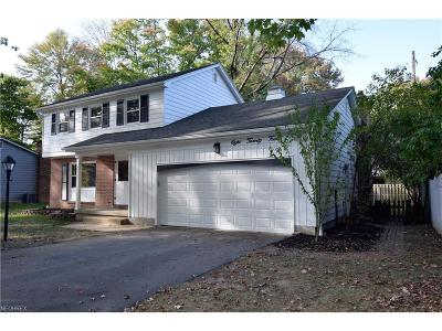Boardman Single Family Home For Sale: 824 Shields Rd