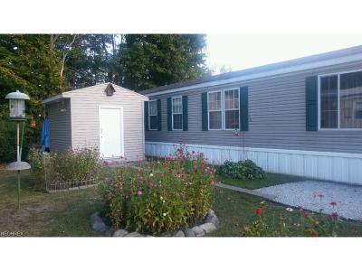 Garrettsville Single Family Home For Sale: 9964 North Ashington