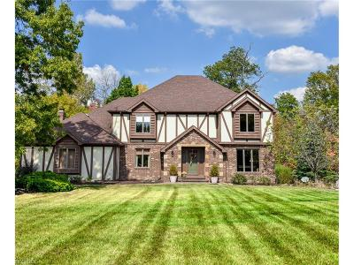Hinckley Single Family Home For Sale: 2293 Brook Haven Ln
