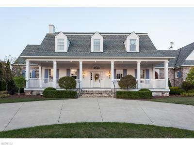 Medina Single Family Home For Sale: 4165 Fox Meadow Dr
