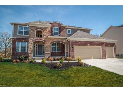 Strongsville Single Family Home For Sale: 18229 Clare Ct