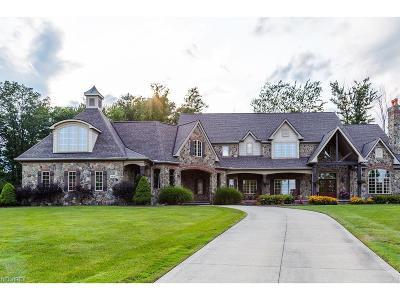 Brecksville Single Family Home For Sale: 4818 Snow Blossom Ln