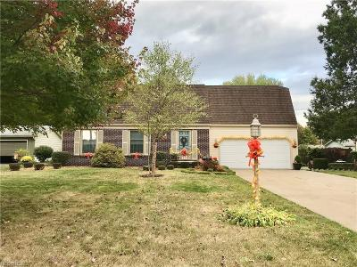 Boardman Single Family Home For Sale: 5075 Simon Rd