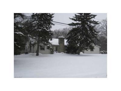 Walton Hills Single Family Home For Sale: 18851 Dellwood Dr