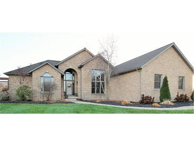 Wadsworth Single Family Home For Sale: 3434 Rohrer Rd