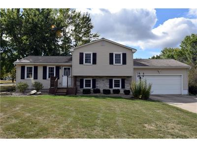 Mineral Ridge Single Family Home For Sale: 1616 Warner Ave