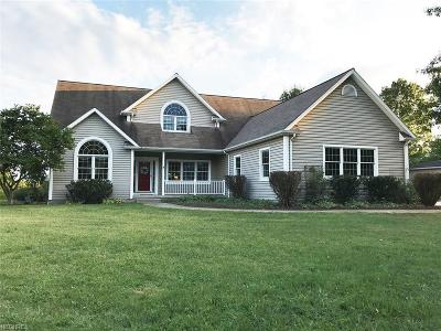 Canfield Single Family Home For Sale: 9801 North Palmyra Rd