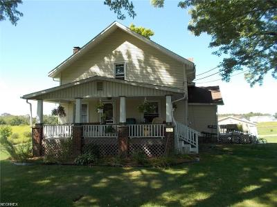Single Family Home For Sale: 3253 State Route 225
