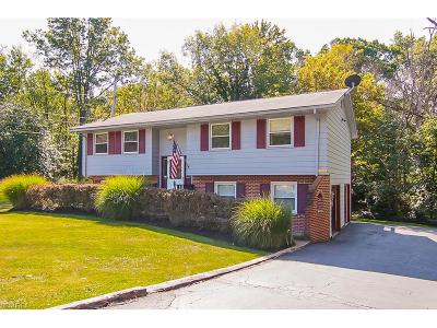 Cleveland Single Family Home For Sale: 4600 Anderson Rd