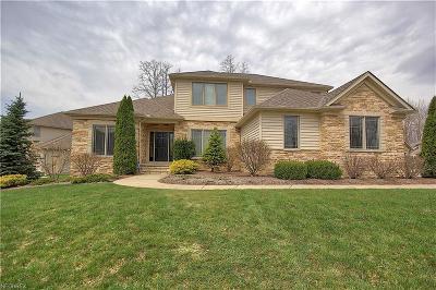 Solon Single Family Home For Sale: 6588 Hyllwynd Cir