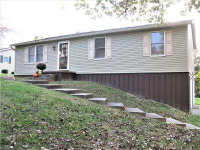 Zanesville Single Family Home For Sale: 375 Marian Dr