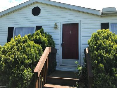 Painesville OH Single Family Home For Sale: $75,000