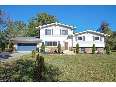 Chardon Single Family Home For Sale: 12815 Bass Lake Rd