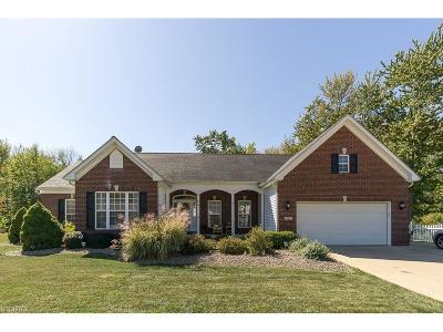 North Ridgeville Single Family Home For Sale: 38653 Avalon Dr
