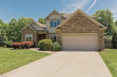 Solon Single Family Home For Sale: 6697 Brandamore Ct