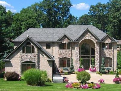 Summit County Single Family Home For Sale: 4648 Dustys Cir